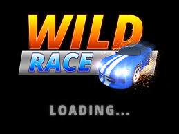 Play Wild Race