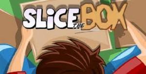 Play Slice the Box