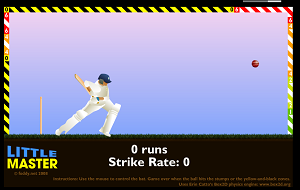 Play Little Master Cricket